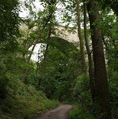 Frank C. Mey - #Reportagen Der #Unstrut_Radweg von der Quelle bis zur Gera-Mündung #Radwege #Radwanderungen #Erfurt #Thüringen http://frank-c-mey.com/unstrut-radweg-30-06-2016-quelle-bis-geramuendung #Buchautor Erfurt Bahnviadukt Reiser