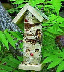 ladybirds house