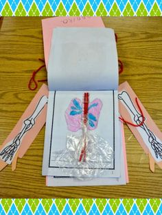 Love Those Kinders!: Simple explanation and activities for little ones to discover how our body works. When book is complete, it is stapled inside a cute body book!