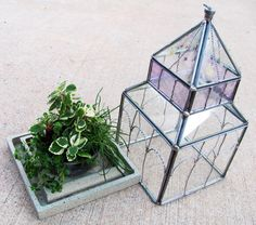 Large Stained Glass Wardian Terrarium