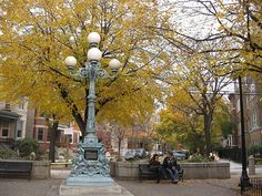 Ravenswood & Lincoln Square Neighborhood Guide