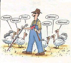 """A Parable Of The Thanksgiving Turkey: He Never Saw It Coming: """"A High-Impact, Hard-To-Predict Event"""""""