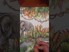 magical jungle lifelike colouring tutorial part 5 - YouTube