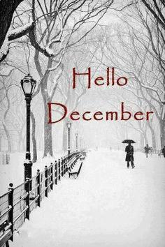 Hello December                                                                                                                                                                                 もっと見る