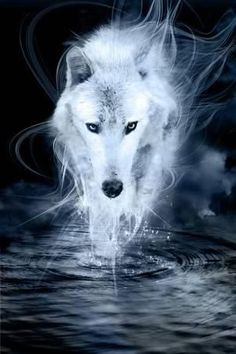 Bild: Alexandra Stanek - ghost You are in the right place about animal wallpaper watercolor Here we Anime Wolf, Mythical Creatures Art, Fantasy Creatures, Wolf Background, Tier Wolf, Wolf Poster, Wolf Artwork, Wolf Spirit Animal, Fantasy Wolf