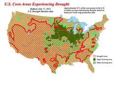 2012 US Drought, Kentucky drought, Illinois crops, Missouri crop yield, Kansas Crop Yields, Kansas drought, Illinois drought, US corn yields, US crop yields, USDA reports, USDA, drought damage, US crop drought