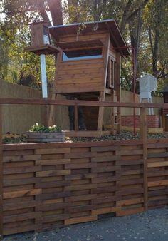 Madárleses játszóteret tervezett a világhírű magyar természetfotós | Sokszínű vidék