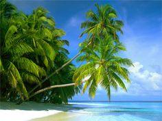 paketresor_sri_lanka_maldiverna_big