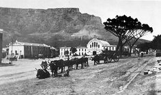 Riebeeck Square In 1890 The old Playhouse, nearly a century old, in the background on the left. Old Pictures, Old Photos, Vintage Photos, Cape Dutch, Le Cap, Cape Town South Africa, Most Beautiful Cities, Historical Pictures, African History
