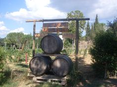 Tuscany, San Gimignano. The entrance of our farmhouse