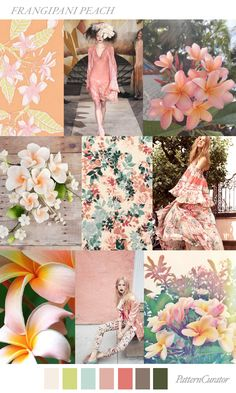 FRANGIPANI PEACH by PatternCurator