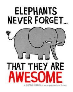 elephants never forget… – gemma correll Elephant Quotes, Elephant Love, Elephant Art, Elephant Stuff, Elephant Drawings, Elephant Illustration, Elephants Never Forget, Elephant Pictures, Most Beautiful Animals