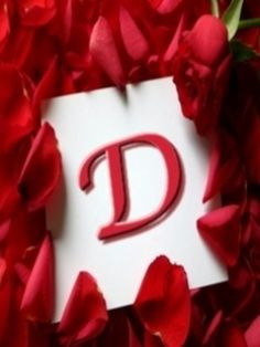 Capital letter d erinl elise pinterest flower letters and letter d with petals altavistaventures Image collections