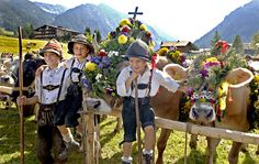 Viehscheid or Almabtrieb (an autumn cattle-drive from the high alpine pastures)