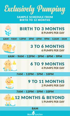 Exclusively Pumping: Sample Schedule From Birth To 12 Months baby breastfeeding baby infants baby quotes baby tips baby toddlers Pumping And Breastfeeding Schedule, Pumping Schedule, Newborn Schedule, Baby Schedule, Breastfeed And Pump Schedule, Feeding Schedule For Baby, 2 Month Old Schedule, Breastfeeding Positions Newborn, Food For Breastfeeding Moms