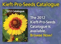 SEO Expert based in Michigan Plant Catalogs, Seeds