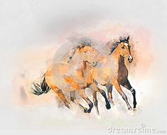 Horses watercolor art for your design.