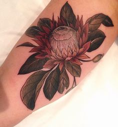 King Protea – With his mythological associations for change and … … - New Tattoo Models Up Tattoos, Tattoo You, Flower Tattoos, Arm Tattoo, Tattoos For Women, Future Tattoos, Design Tattoo, Tattoo Designs, Unique Tattoos