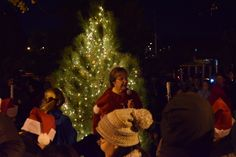Mayor Ann Campbell speaks to a crowd during the Snow Magic Kickoff Friday. Representatives from Main Street turned on a lighted tree in Tom Evans Park and debuted new downtown lighting. Photo by Dan Mika/Ames Tribune