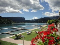 Swimming and bathing in Lake Bled