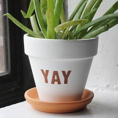 Refresh a planter with this easy sticker-stenciling tutorial. Yay!