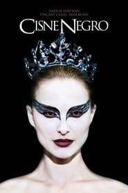 Rent Black Swan starring Natalie Portman and Mila Kunis on DVD and Blu-ray. Get unlimited DVD Movies & TV Shows delivered to your door with no late fees, ever. The Black Swan, Black Swan Film, Black Swan 2010, Natalie Portman, Barbara Hershey, Tyler Perry, Really Good Movies, Great Movies, Winona Ryder