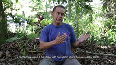 La historia personal de un paciente del Centro Takiwasi San, Mens Tops, T Shirt, Centre, Historia, Supreme T Shirt, Tee Shirt, Tee