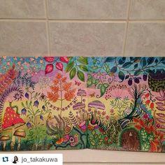 Instagram media minha_florestaencantada - #Repost @jo_takakuwa ・・・ #florestaencantada #Minha_Florestaencantada #jardimsecreto