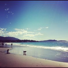 Carmel By The Sea - Take a walk on the beach, bring the pup, the kids. But be certain to bring layers. It can get chilly!