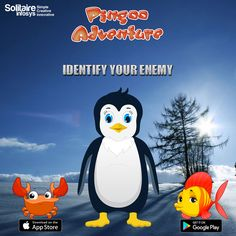 Do you know, Pingoo is having a hard time in identifying its #enemy! Can you help #Pingoo so that he doesn't get eaten up! We know that you would do! We all love Pingoo and want to save him from the #horror of being #eaten up.  #pingugames, #pingogame, #pingookidsgame, #penguinarcadegames, #bestadventuregames, #topadventuregamesfree, #arcadeadventure #free #games