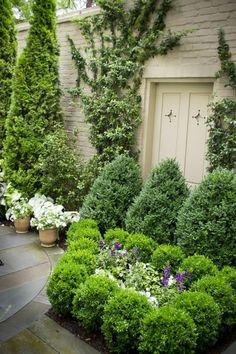 Fresh green plants garden door wood