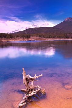 Lily Lake  Long's Peak (Colorado Springs, Colorado)