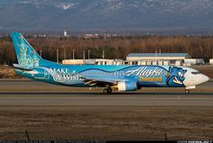 Boeing 737-490 aircraft picture