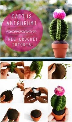 You will love this collection of Crochet Cactus Patterns and we have all the most popular ideas with lots of free patterns and video tutorial included. Crochet Amigurumi Free Patterns, Crochet Flower Patterns, Crochet Flowers, Crochet Stitches, Crochet Cactus, Love Crochet, Diy Crochet, Crochet Ideas, Cactus E Suculentas