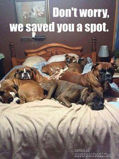 Saved a spot