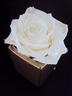 petit pot argenté et sa rose blanche idée cadeau qualité effet