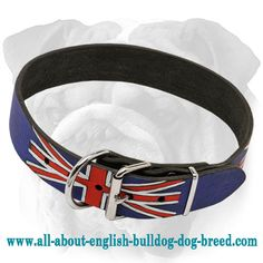 Stylish #English #Bulldog #Collar with Union Jack Painting $49.90 | www.all-about-english-bulldog-dog-breed.com