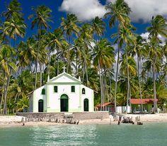 Como chegar na Praia dos Carneiros saindo de Recife ou Porto de Galinhas (Foto via Shutterstock)
