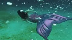 Beautiful..The Discovery channel had a thing about Mermaids it makes you wonder