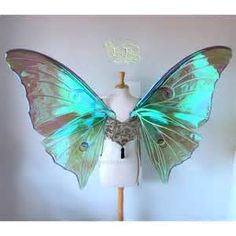 Extra Large Fairy Wings - Bing images