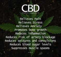 Benefits of CBD Oil <3  #cannabis #weed #marijuana #stoners #420 #cbdoil #hempoil #cbd #ganja #benefitsofcbd