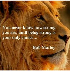 Not a fan of quoting Bob Marley but this is very true