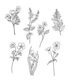 25 Beautiful Flower Drawing Information & Ideas – Brighter Craft Mini Tattoos, Flower Tattoos, Small Tattoos, Redwood Tattoo, Flower Sketches, Drawing Flowers, Flower Design Drawing, Floral Drawing, Plant Sketches