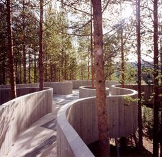 ideas Norway viewing point Meandering Through Old Pine Trees: Spectacular Sohlbergplassen Viewpoint in Norway