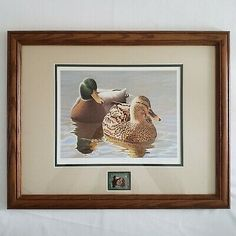Mallard Morning by Nathan Closson. Place Winner in the Federal Junior Duck Stamp Design Contest. Artist Painting, Painting Frames, Dog Pond, Painted Picture Frames, Litho Print, Framed Prints, Art Prints, Mallard, Hanging Wall Art