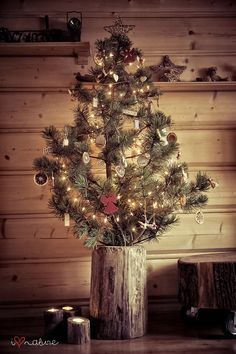 Christmas tree made from a broken branch