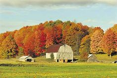 Fall Color Tours - Traverse City and Northern Michigan Area Guide