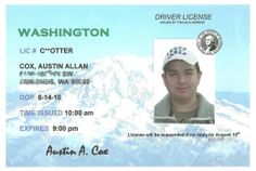 Sweet 16th Birthday Party Ideas for Boys -- Create a Driver's License Themed Invitation for your son's sixteenth birthday party