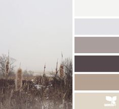 foggy tones | design seeds