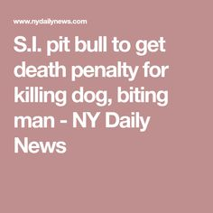 S.I. pit bull to get death penalty for killing dog, biting man - NY Daily News